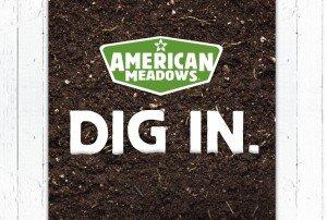 American Meadows - Dig In