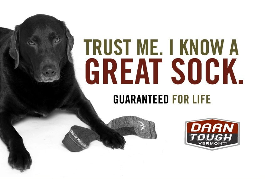 Trust me. I know a great sock.