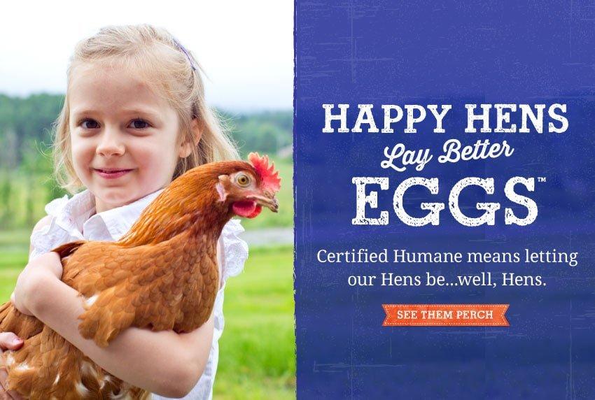 Happy hens lay better eggs