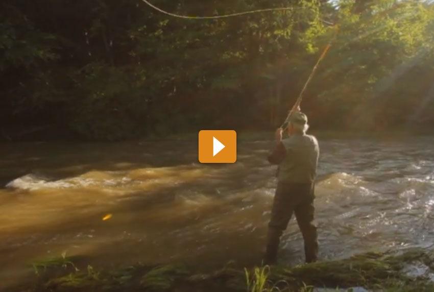 Union Bank - Fishing Video