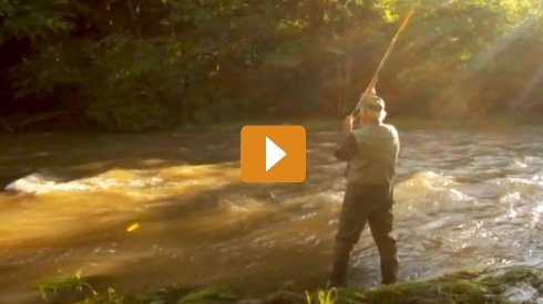 Union Bank Video - Fishing
