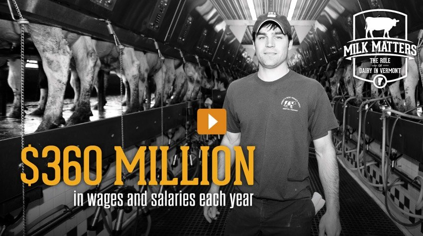 Vermont Dairy - Video
