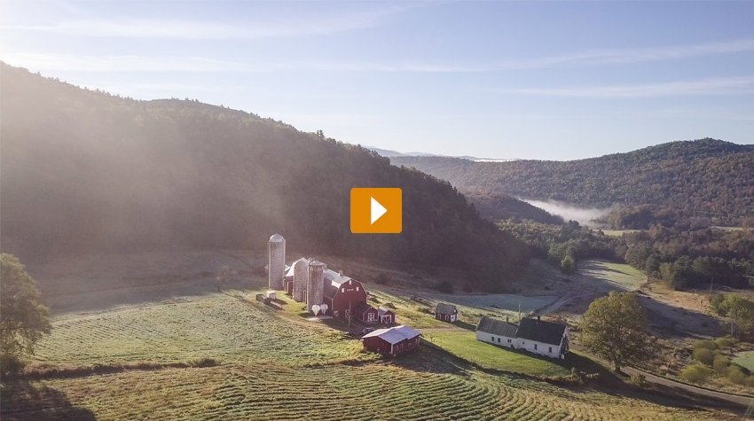 Pete & Gerry's Organic Eggs - Brand Anthem Video